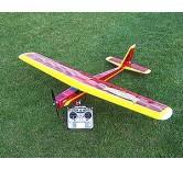 Fledgling El-Trainer (ARF