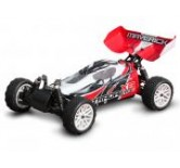 Buggy Painted Body Red (Stada EVO XB)